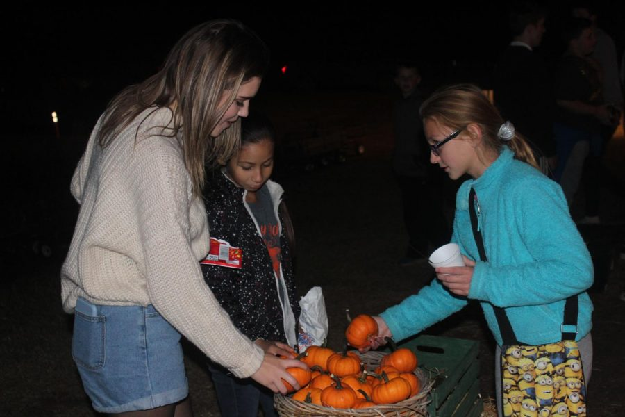 Hope Nurnberg, Aliyah Viramontes, and Jordyn Willis picking out small gourds. They were able to each take one gourd home as a gift from the pumpkin patch.