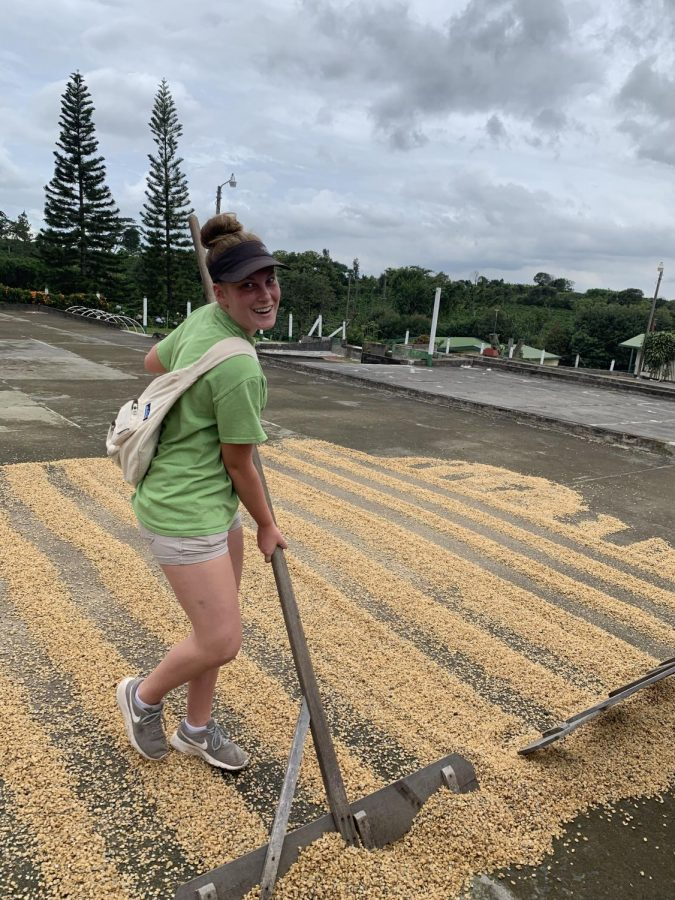 Madison Lawson rakes dry coffee beans. She is at the plantation in Alajuela, Costa Rica.