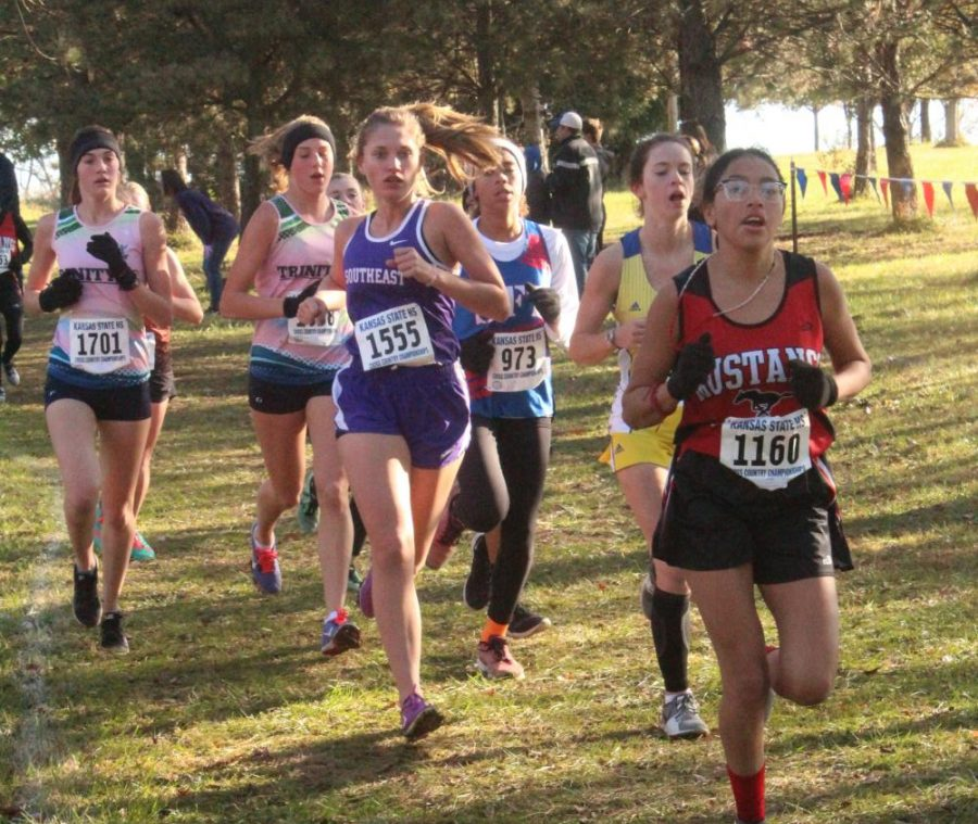 Freshman, Avery Caselman, races against a pack of runners at the state meet on Saturday.