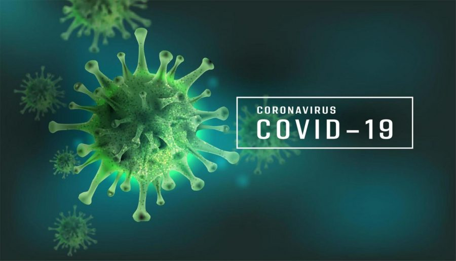 Editor finds faults in our response to the coronavirus